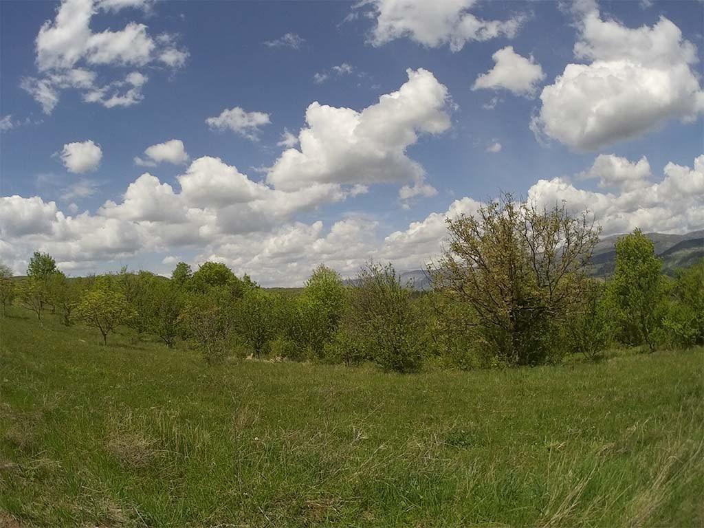 SooCoo S60 photography sample field grass sky