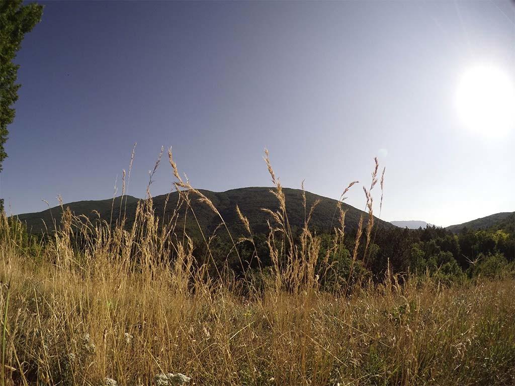 Beautiful field,in Vrgudinac, a village in Serbia.