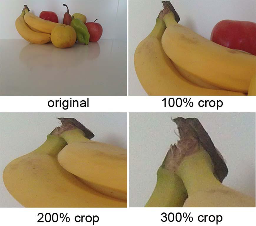 Crop Sample Foream X1 image