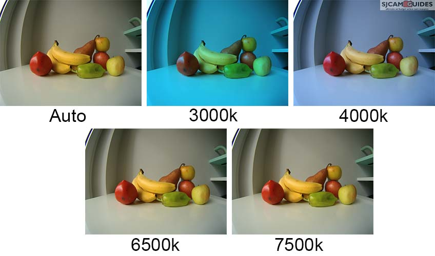Different white balance options have a big impact on how warm or cold the output footage looks.