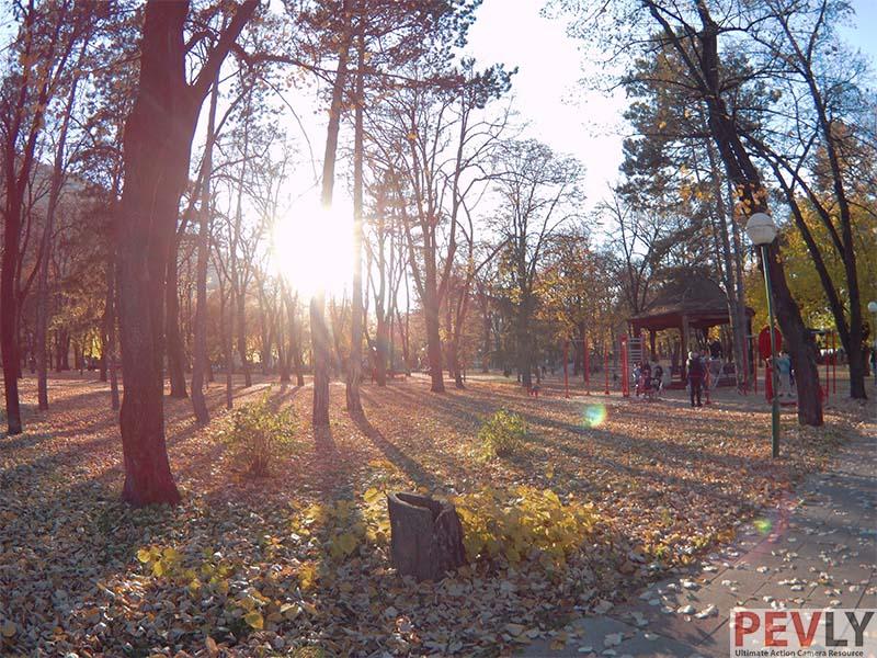 Fifefly 6s Photo Sample Sunset Woods Autumn